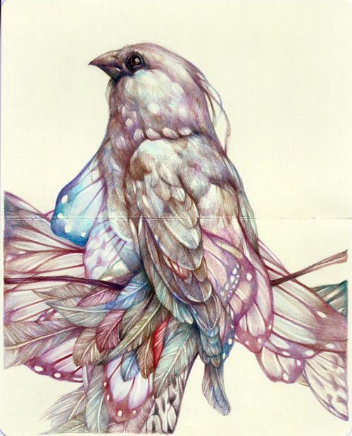 """""""The Hopeful"""" 2012, colored pencils and ink on moleskine paper -Marco Mazzoni"""