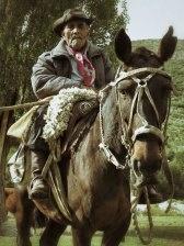 Old Gaucho