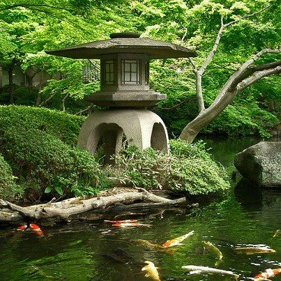 Japanese garden lantern & koi pond