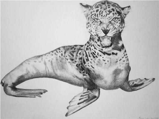 animal_metamorphosis