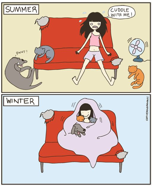why i like winter and fall better...its not hot and my kittehs like to cuddle!