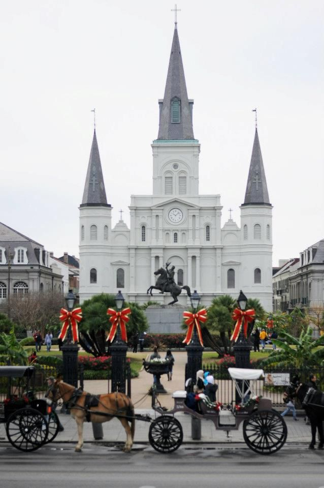 St. Louis Cathedral   RePinned by : www.powercouplelife.com
