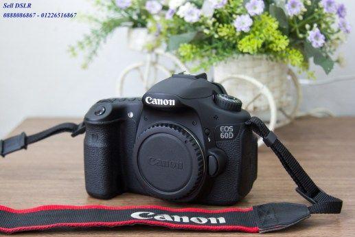 Canon 60D / 650D / 550D   Canon 24-105 F4 L    Sigma 24-35 F2 Art