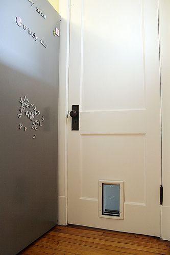 The pet door, kitchen to basement
