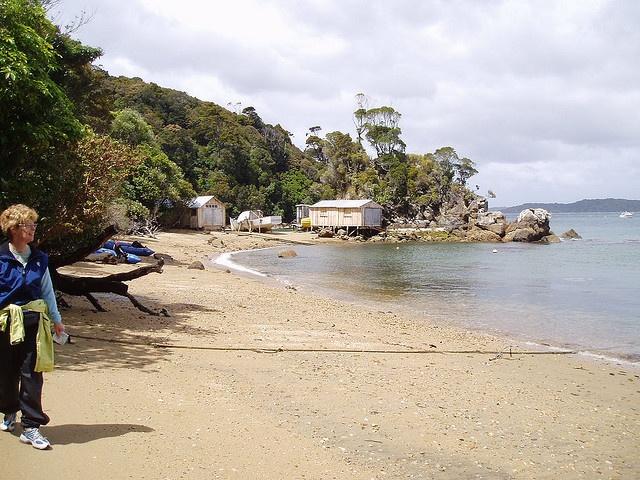 Unspoiled beach on Stewart Island, NZ
