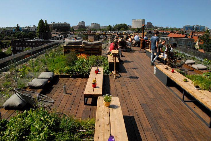 NEST is het dakpark op hotel Casa 400, dit dakterras is gerealiseerd door De Dakdokters, wij maken steden gezond door daken te transformeren.