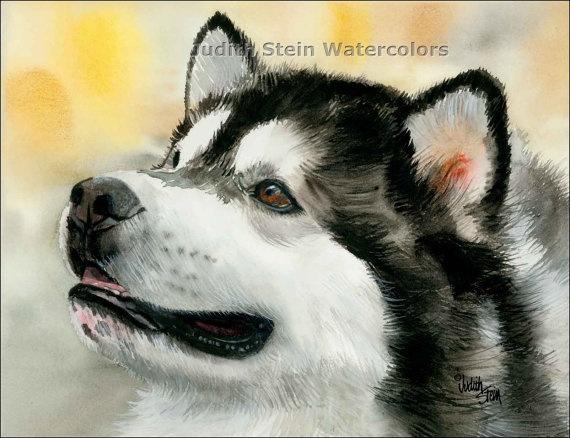 ALASKAN MALAMUTE Dog 15x11 Giclee Watercolor Print by k9stein, $40.00