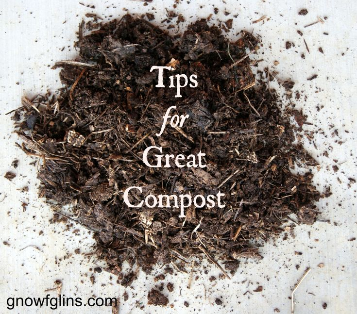 Composting 101 What Is Compost: Best 25+ Garden Compost Ideas On Pinterest