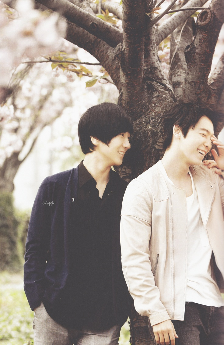 Yesung and Donghae