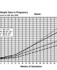 The  Best Baby Weight Gain Chart Ideas On   Baby