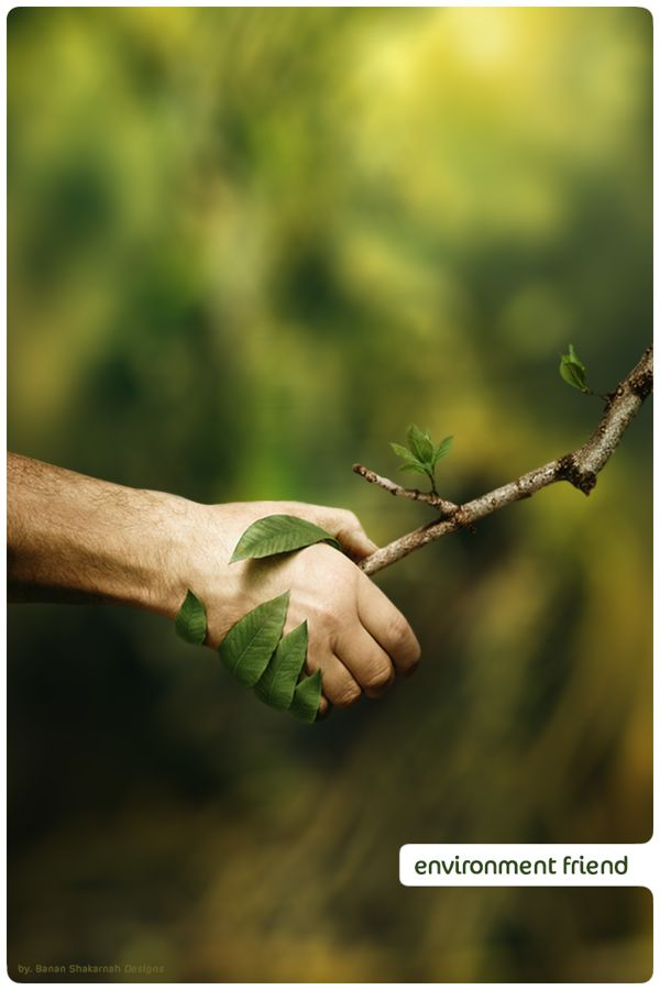 Hand holding, be Environmentally Friendly. Hand & Hand.