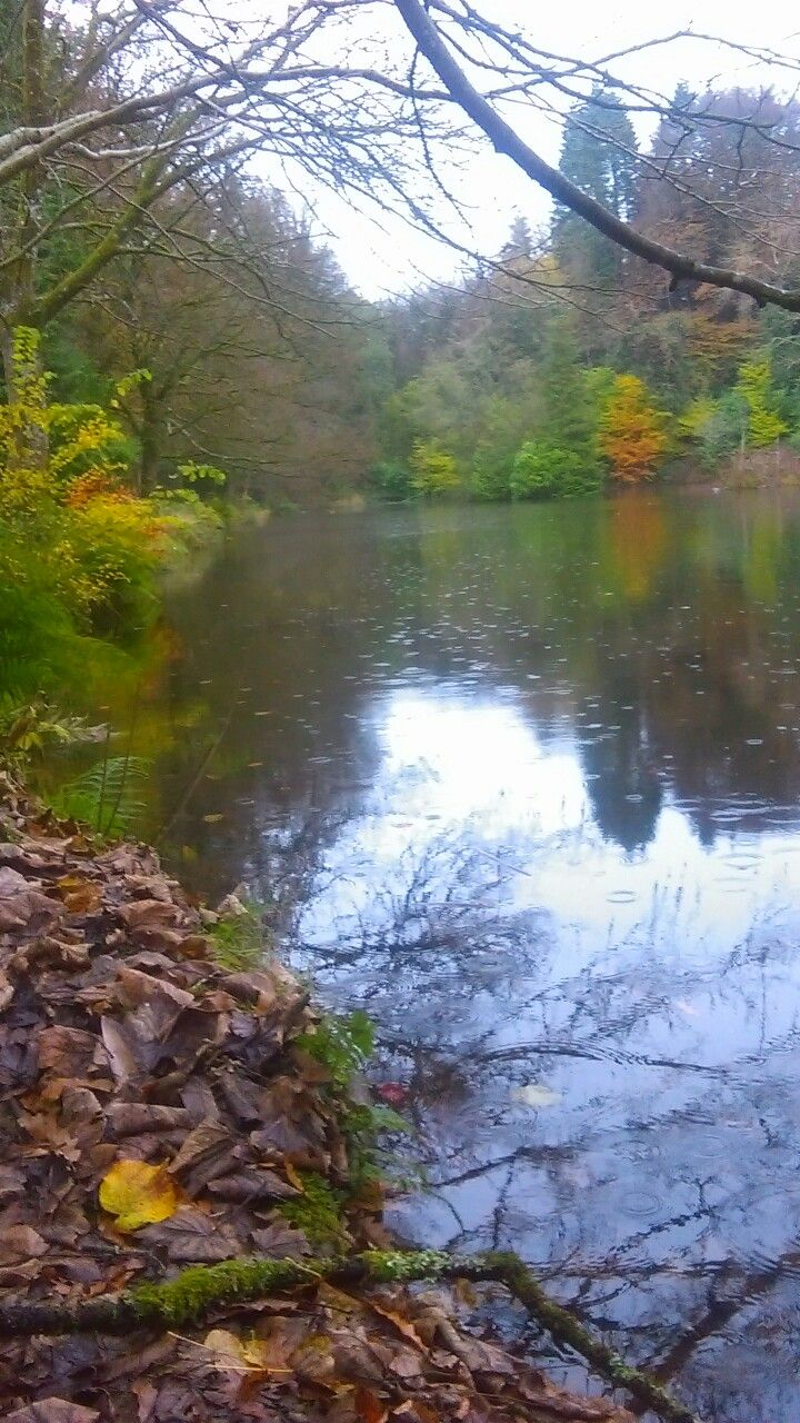 Dún na Rí Forest Park is a forest park is situated on the County Cavan-County Monaghan border, in Ireland.