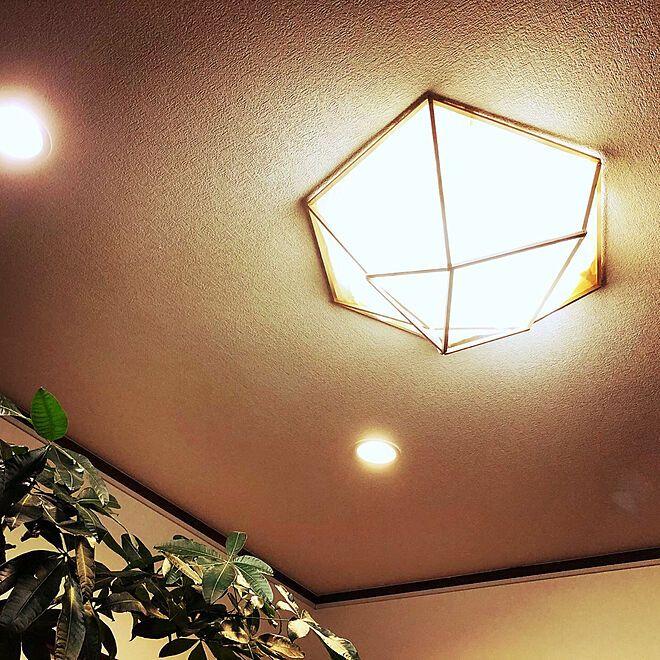 和紙照明 ライトカバーdiy ライトカバー シーリングライト リビング