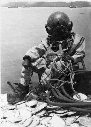 a history and types of underwater diving Modern scuba diving gear consists of one or more gas tanks strapped to the divers back, connected to an air hose and an invention called the demand regulator the demand regulator controls the flow of air, so that the air pressure within the diver's lungs equals the pressure of the water early .