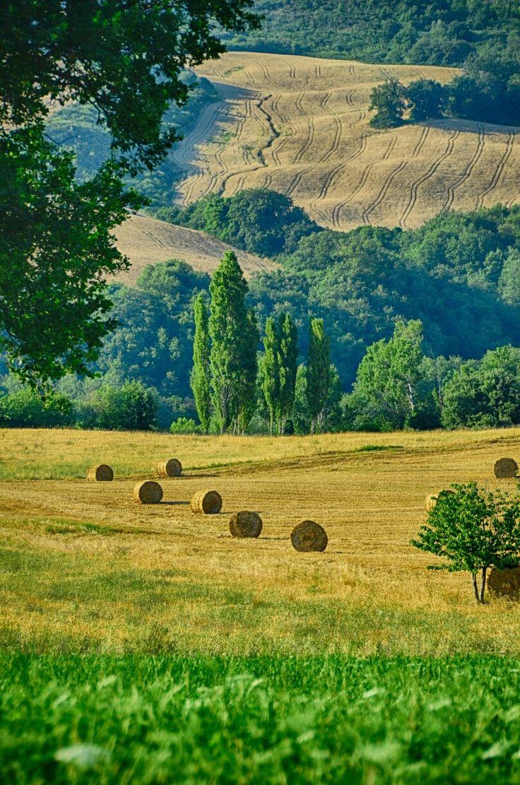 #bucolico #paesaggio #nature #agricoltura #italy #landscape