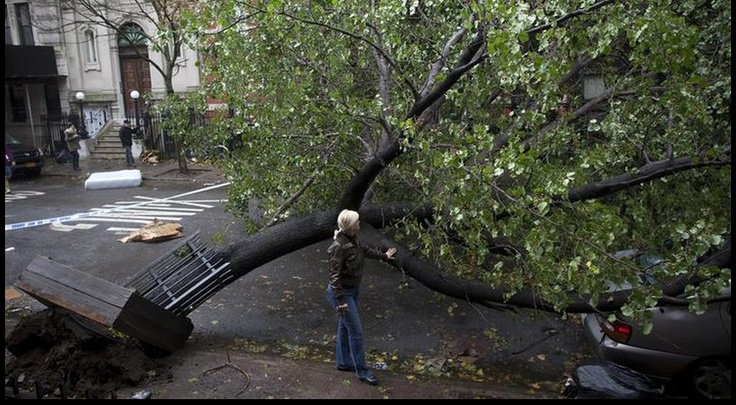 Libération or Le Monde... one day in Manhattan......after the storm