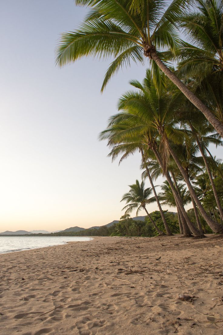 Palm Cove Beach - Cairns, Australia