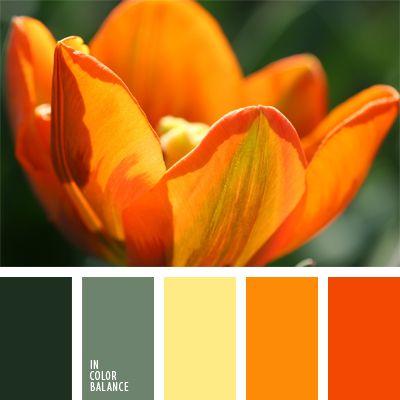 amarillo y anaranjado, anaranjado, anaranjado oscuro, colores anaranjado oscuro y verde, combinación verde-anaranjado, elección del color, selección de colores, tonos anaranjados, verde claro, verde oscuro, verde y anaranjado.