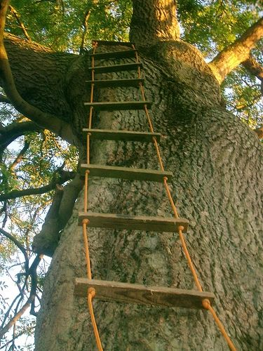 How to Make a Rope Ladder, well I will need someway of getting to guest room number 2 :-) plus rope ladder!!!