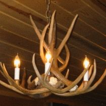17 Best Ideas About Deer Antler Chandelier On Pinterest