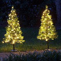 Walkway Christmas Trees