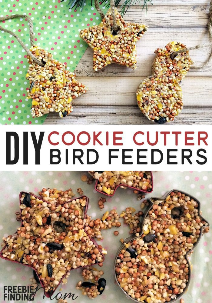 Want a fun, cheap, and easy Christmas craft for kids? These Homemade Cookie Cutter Bird Feeders are sure to do the trick! You likely already have most everything you need for this fun winter activity for kids plus these homemade bird feeders make great DIY gifts for teachers, friends, and family.