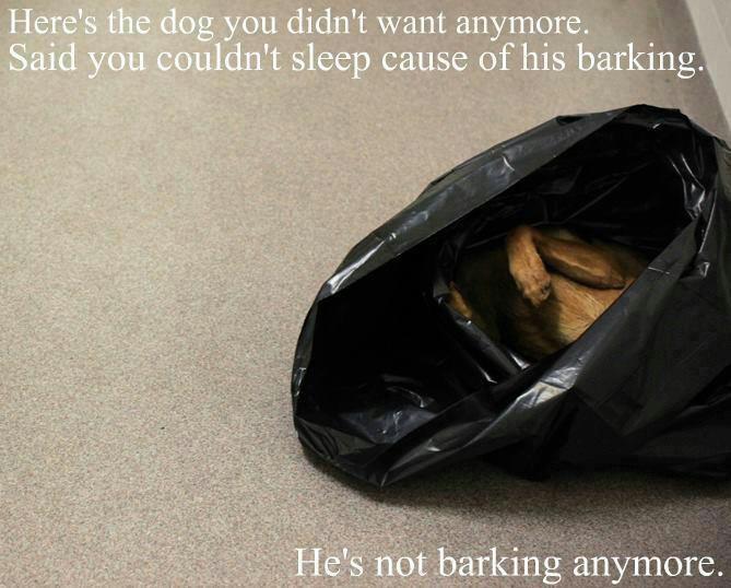 Dog barking kill that fucking dog