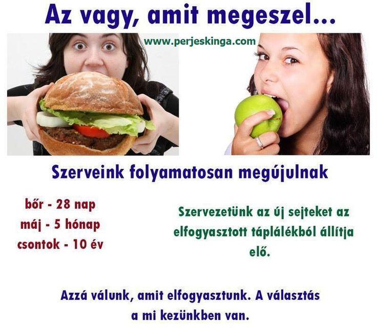 Az vagy, amit megeszel... || www.perjeskinga.com