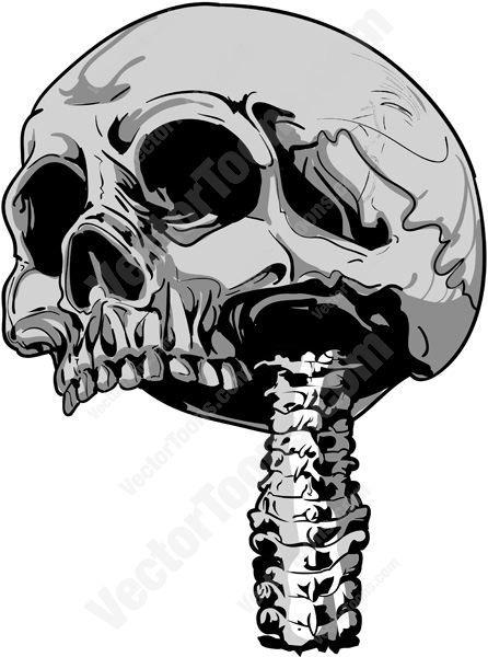Human Jaw Tattoo: Top Half Cranium Of Human Skull With Vertebrae Spine
