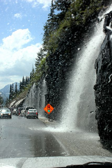 Weeping Wall along the Going to the Sun Highway in Glacier Park, Montana.  Learn more about Glacier National Park at http://glaciernationalpark.mobi/