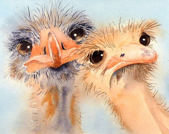 Ostrich Bird Painting Print of a Watercolor Painting by LaBerge
