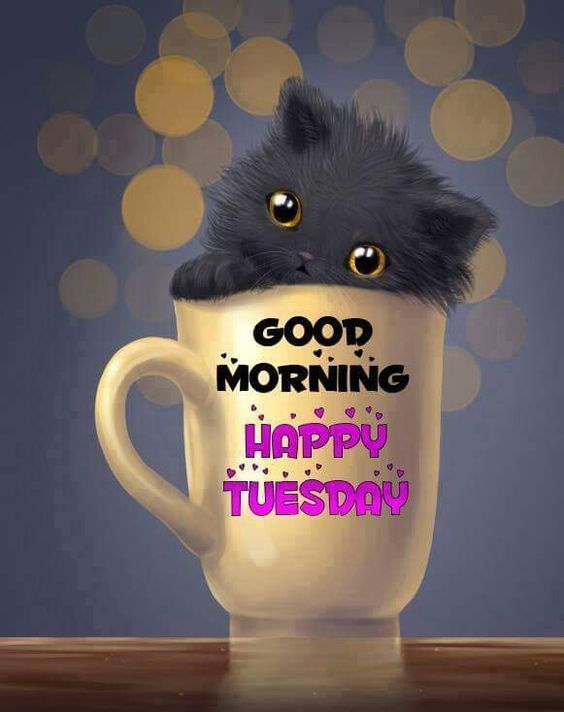 Good Morning Happy Tuesday!!  Have a great day ladies:)