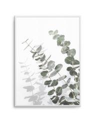 "Eucalyptus II - 50cm x 70cm | 19.6"" x 27.5"" | 500mm x 700mm"