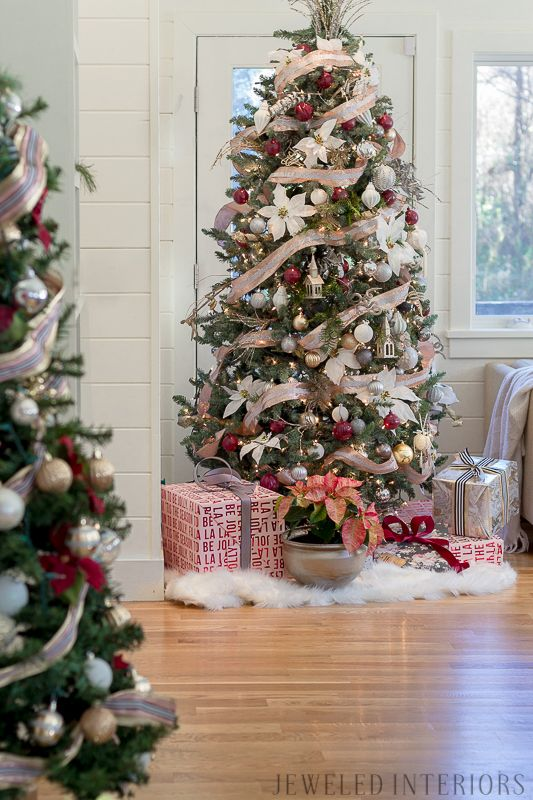 12581 best christmas trees images on pinterest xmas for Best looking christmas tree