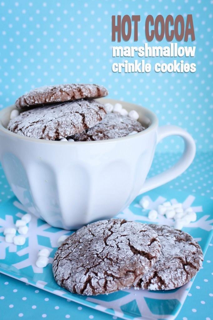 cookies rolled cocoa cookies cookies milk yummy cookies chocolate ...