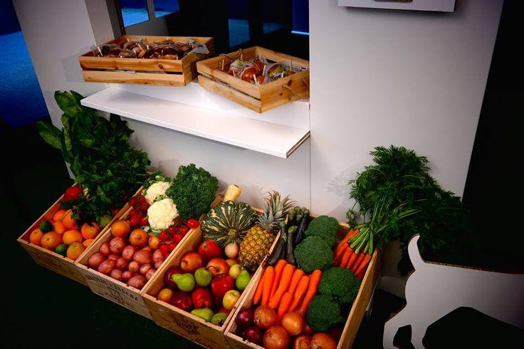 Modular Exhibition Stands Yard : Best cardboard display images on pinterest