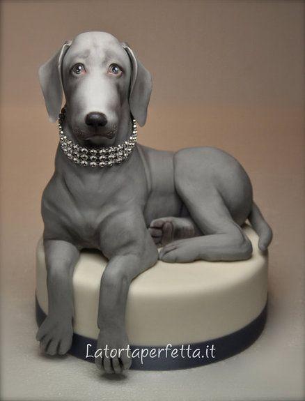 Edible Art, Cake | Bracco Weimaraner