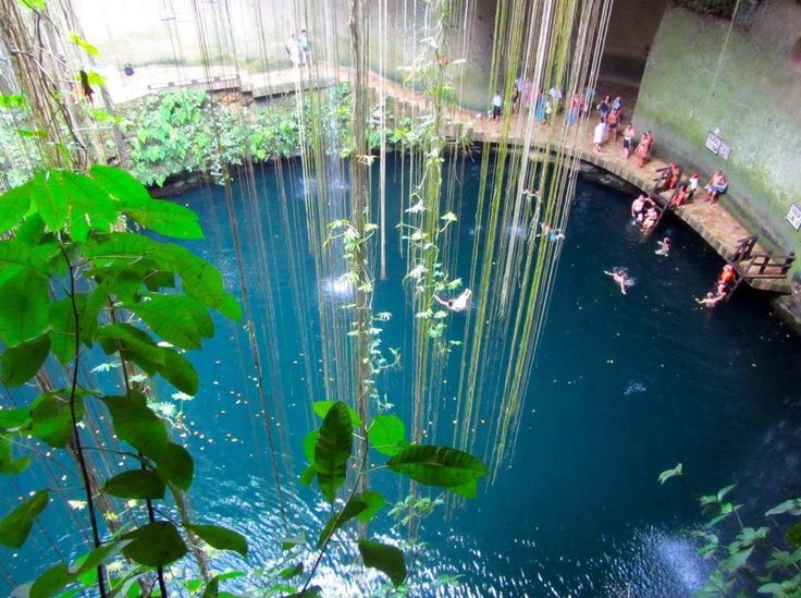 """Located in the Eco-archeological Park Ik Kil, just 3 km from Chichén Itzá and Pisté. Called the """"Sacred Blue Cenote,"""" it is a perfectly round well-type cenote with exuberant vegetation and waterfalls. This is another ideal place for swimming in the clear blue water. 196 feet wide and about 130 feet deep, it is an open cenote about 85 feet from the surface."""