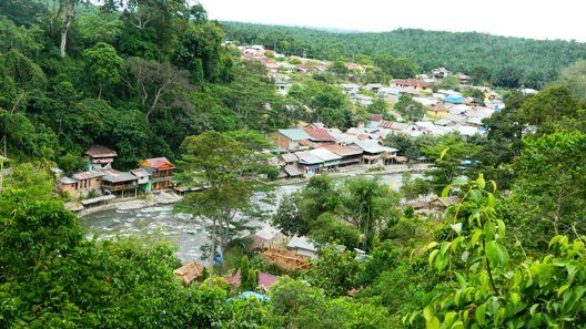 Lower Bukit Lawang North Sumatra