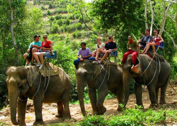 elephant-trekking-phuket