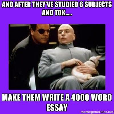 What are the different essay you have to write for IB program?