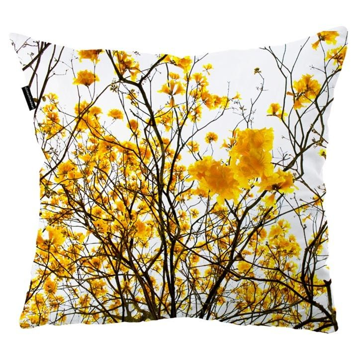 Clinton Friedman Collections - outdoor cushions