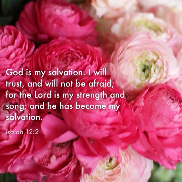 Isaiah 12:2. God is my salvation...
