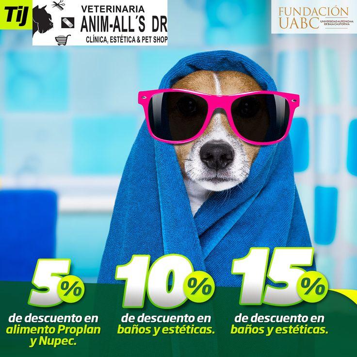 Hasta tu mascota recibe los beneficios de tener Tarjeta Identidad.  Ven a Veterinaria Anim-all´s porque obtendrás: 5% en alimento Proplan y Nupec 10% en baños y esteticas 15% en Boutique