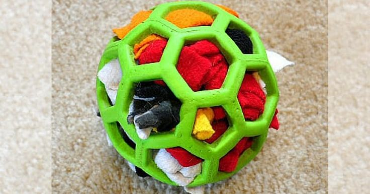 Dog toys, beds, clothes, collars and bowls! Release your inner creative side and check out these 16 DIY dog projects your fur baby will thank you for.