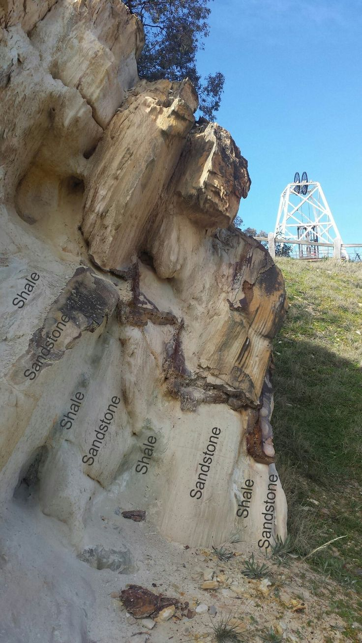 Vein exploiting cleavage and refracting through sandstones and shales, Victoria Hill, Bendigo. The headframe over the Victoria Quartz is in the background.
