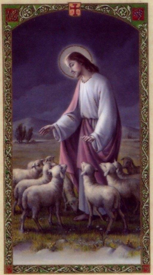 Laminated Prayer Cards - Time of Distress Sick Illness Suffering Trials HC9-494E 2 • $2.15