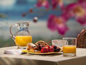 rivershack | Activities - Yamba - waterfront accommodation - activities - organic food