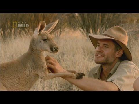 Kangaroo Dundee | Season 1 Special | Full Episode