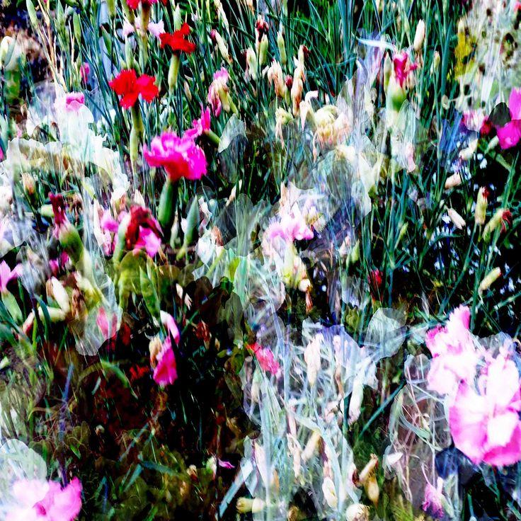 James Mclean Mixed Media Artist Grace Medium: Photography + Digital Manipulation Size: 100cm x 100cm